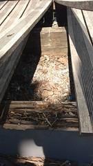 IMG_20160815_133558021 (nst38) Tags: terrasse bois pin autoclave aix les bains