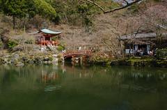 Daigo-ji, Kyoto /  (Kaoru Honda) Tags: city nature japan cherry landscape temple japanese spring nikon kyoto traditional           daigoji   d7000
