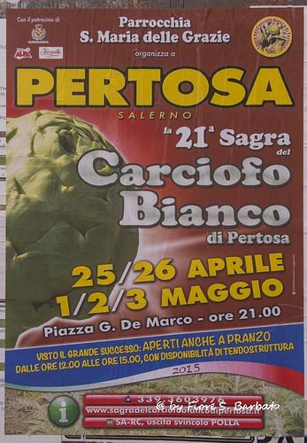 Pertosa (SA), 2015, XXI sagra del carciofo bianco di Pertosa.