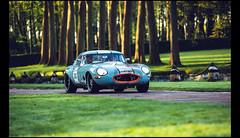 Jaguar Type E 3,8L (1962) (Laurent DUCHENE) Tags: jaguar château 2015 courances 38l typee tourauto