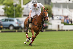 "2015 ""Ham Polo Club"",""The Mayor of Kingston's Charity Polo Day"", ""The Double Bett Cup"",""Nanogen vs Andina"", (Ham Polo Club) Tags: england london sport equestrian gbr 2015 horserangers hampolo tw107ah kingstonmaldensandgmarchingband themayorofkingstonscharitypolodaythedoublebettcup kingstonsmorrisdancers nanogenvsandina"