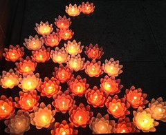 Wishes floating on water (brisa estelar) Tags: red water festival japan temple lights candles outdoor traditional buddhism mallow ritual shingon  koushoji