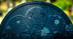 (Rodney Harvey) Tags: deaths head headstone graveyard cemetery cape cos massachusetts wings spooky creepy lichen skull alien frown