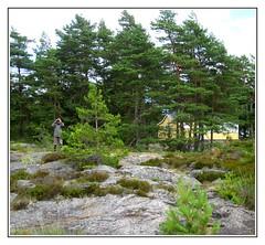 Outdoor looking for birds (Brje Trttne) Tags: sweden sverige vnern vrmland sffle lakevnern