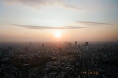 -13 (UME2nd) Tags: fujifilm japan natura classica