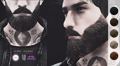 No.MINAL - King Beard (MINIMAL Store) Tags: no x minimal mens only monthly