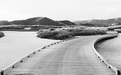 Bridge to Golf (robinguymer) Tags: golf deva caffenol nikonfe2 film bwfp bw