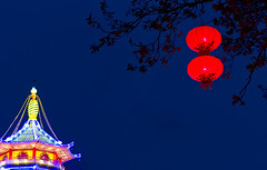 (The New Motive Power) Tags: sky neon glow chinese festivaloflight lantern longleat canon7d