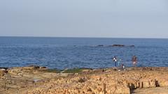 Fishermen (Rckr88) Tags: fish fishing fishermen water sea ocean coast coastline coastal plettenbergbay plettenberg bay westerncape south southafrica africa rocks rock rockycoastline travel outdoors nature