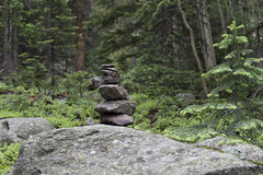 Mystery Forest Cairn [Explore] (aaronrhawkins) Tags: cairn rockstack forest mystery trees ferns rockymountainnationalpark hike trail hikingtrail nature marker woods aaronhawkins