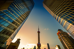 conference of towers (Rob-Shanghai) Tags: cv12mm leica m240 shanghai china lujiazui pearltower scrapers