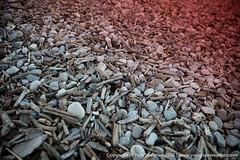 20160715-085A8118.jpg (Vaughan Weather) Tags: toronto shoreline landscape shore density 5dsr ontario graduated lake park neutral red canada ca
