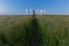 I Love U (HotSnapshot) Tags: longexposure blue sunset lightpainting abstract art love canon landscape wheat bedfordshire motionblur hour slowshutter 5d iloveyou canon5d bluehour longshutter luton slowshutterspeed longexposures thebluehour longshutterspeed 2470mm iloveu 2470 2470mmf28 longshutterspeeds wardenhills canon5dmarkiii 5d3 iphone6 canon5dmark3 2470mmf28ii canon2470mmf28iil