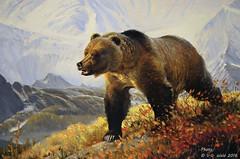 On the Prowl (detail), John Clymer (V. C. Wald) Tags: jacksonhole grandtetonnationalpark ontheprowl wildlifeart jacksonwyoming nationalmuseumofwildlifeart johnclymer