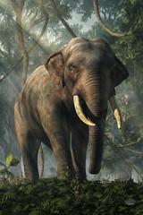 Jungle Elephant (deskridge) Tags: elephant jungle india junglebook indian kipling animal wildlife pachyderm green forest guard guardian challenge defiance tusk trunk ivory poaching conservation endangered danieleskridge eskridge jumbo hathi