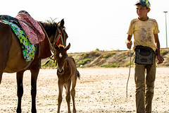 Avec gentillesse, tu peux dplacer les montagnes. (- Ali Rankouhi) Tags: golestan iran north boy man horses foal        young