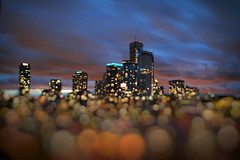 The City Floating in Ocean of Bokeh (Katrin Ray) Tags: thecityfloatinginoceanofbokeh blueblurhourmagic bluehour summer bokeh blur magic downtown skyscrapers lights colours longexposure toronto ontario canada katrinray dreamscapesoftoronto tiltshift miniature canonphotography canon eos rebel t6i 750d