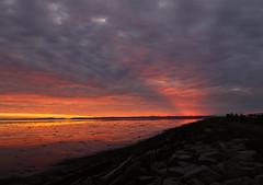 It Goes On (Dex Horton Photography) Tags: robertfrost itgoeson poem sunset ladner bc britishcolumbia orange beach nature preserve november sky color golden sanctuary bestof dexhorton