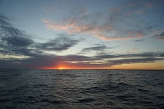 Sonnenuntergang bei Ystad