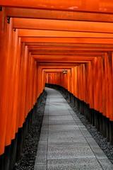 Fushimi Inari Shrine (ganagafoto) Tags: ganagafoto travels viaggi asia japan giappone temples templi fushimiinari shines red torii rosso devotion devozione kyoto