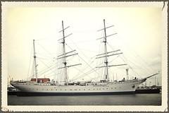 Gorch Fock (v8dub) Tags: museum sailboat germany deutschland boot boat muse sail bateau allemagne schiff stralsund segelboot voilier gorch fock vorpommern mecklenbug