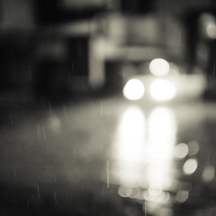 A rainy day-11 (☆SANGANO☆) Tags: bw monochrome rain 35mm f14 ze 光 carlzeiss 雨 6×6