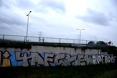 graffiti (wojofoto) Tags: holland graffiti nederland railway netherland spoor trackside taf spoorweg wolfgangjosten wojofoto tafcrew