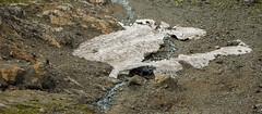 E s c a l a d a (fabian.kopetsckny) Tags: patagonia argentina nikon cerro coolpix sur montaña hielo arroyo elbolsón airelibre ríonegro s3100 hieloazul refugionatación
