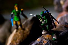 Showdown (DigitalSkill) Tags: blue green smile fight rocks bokeh good ninja turtles link zelda samurai leonardo swords challenge showdown tmnt revoltech figma