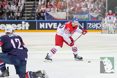 "IIHF WC15 BM Czech Republic vs. USA 17.05.2015 057.jpg • <a style=""font-size:0.8em;"" href=""http://www.flickr.com/photos/64442770@N03/17826728802/"" target=""_blank"">View on Flickr</a>"