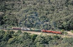 GM22, GM27, EL58, 4458 and 4497, on 4168, climb Cowan Bank, Main North, NSW, 8th August, 2001. (garratt3) Tags: 4168 aus elclass film rail railroad rural train standardgauge 44class gmclass lvrf mainnorth railway railways trains dieselpower dieselfreight australia kodachrome nsw newsouthwales