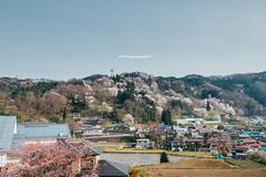 - (usagi0915) Tags:    japanricoh grd travel           japan ricoh travel