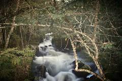 DSC_0212 (martagsc79) Tags: water argentina river outdoor falls waterfalls cataratas iguazu iguassu efectoseda