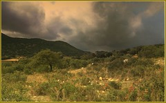 #    Tormenta # (jose luis naussa ( + 1,9 k w. )) Tags: paisajes nubes tormenta   nwh saariysqualitypictures