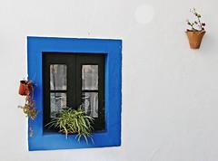 Window! (Jorge Cardim) Tags: blue portugal window azul wow faro janela estoi