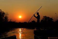 15-09-18 Ruta Okavango Botswana (497) R01 (Nikobo3) Tags: frica botswana delta deltadelokavango okavango parque naturaleza paisajes travel viajes nikon nikond800 d800 nikon247028 nikobo josgarcacobo flickrtravelaward ngc unesco omot twop color culturas puestadesol
