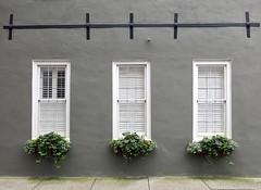 An unusual type of earthquake bolt, 59 Anson Street, Charleston, SC (Hunky Punk) Tags: dwwg charleston sc earthquakebolt street anson window southcarolina iron x plate slat house