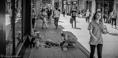 Dog Sand Sculpture under construction. (steve.gombocz) Tags: york street streetphotos streetphotography streetbw flickrbw bwflickr flickrblackwhitephotos blackandwhiteunlimited bw bwphotos blackwhite whiteblack blacknwhite noiretblanc schwartzundweiss negroyblanco zwartwit neroebianco sortoghvid mustavalkoinen svarthvitt svartoghvitt svartochvitt czarnyibiaty noirblanc schwartzweiss negroblanco nerobianco olympus olympususers olympusbw olympusm25mmf18 olympusem5mark2 olympusmzuiko25mmf18lens olympusdigitalcamerausers micro43rdsuk olympuszuikodigitalclub streetscenes bwstreet