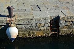 Muggia (boisderose) Tags: sea mare gulf boa buoy trieste golfo motonave boisderose delfinoverde triestemuggia gitenelgolfo servizidilinea lineamarittima
