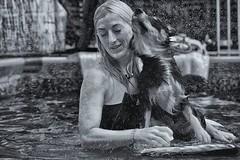 vaporised (Alessio Pagani) Tags: dog swim swimming lesson lessons pool water vaporised gocce acqua cane nuoto piscina lezioni corso australianshepherd vasca estate caldo