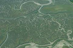 Salt Marsh Creeks - Essex (mpw1421) Tags: nikon d60 essex landscapes landscape saltmarsh creeks water riverblackwater 522016edition 522016 wk3252
