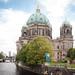 Fotosafari Berlin