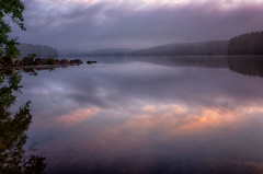 Soft-Ligtht-Of-Morning (desouto) Tags: nature hdr pond lake water plants trees