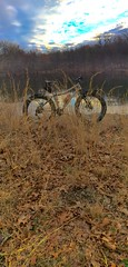 2015 bike 180: day 61 (georgestewart1956) Tags: sunset lake goldengrass fatbike fatbackbicycles 2015bike180day61
