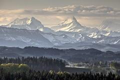 IMG_3247 Schreckhorn (Role Bigler) Tags: alps swiss alpen hdr emmental schreckhorn lueg schweizeralpen berneralpen compressedlandscape 4078m
