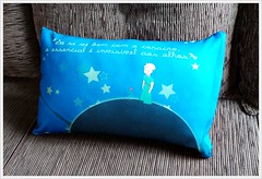 Almofada Pequeno Prncipe - Pillow (bruna.cosini) Tags: home brasil bag skull tissue pillow owl coruja patch decor caveira almofada tecido pou