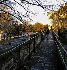 remparts d'Avignon (D_G_T) Tags: nikon coolpix p5000