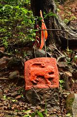 DSC_000 (80) (Praveen Ramavath) Tags: matsyapurana agnipurana skandapurana harishchandragad kalachuridynasty 6thcenturyad khireshwar harishchandreshwar temple kedareshwar shaiva shakta naath shiva siva cave pillars four konkankada konkan cliff ganapathi india maharastra hindu culture
