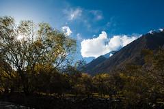 Rashit Trekking (Muhammad Hamza Niazi) Tags: pakistan beautiful trekking hunza passu gilgit northernareapakistan rashit
