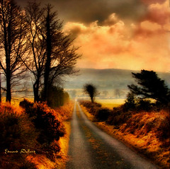 """I love to ramble down the  old bog road"" (Edward Dullard Photography. Kilkenny, Ireland.) Tags: road trees kilkenny ireland sky painterly nature clouds landscape camino path eire photoart leinster windgap edwarddullardphotography oldkilkennyphotos oldphotographsofkilkenny oldpicturesofkilkenny"